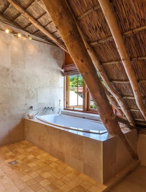 Bathtub in loft with tree growing through roof