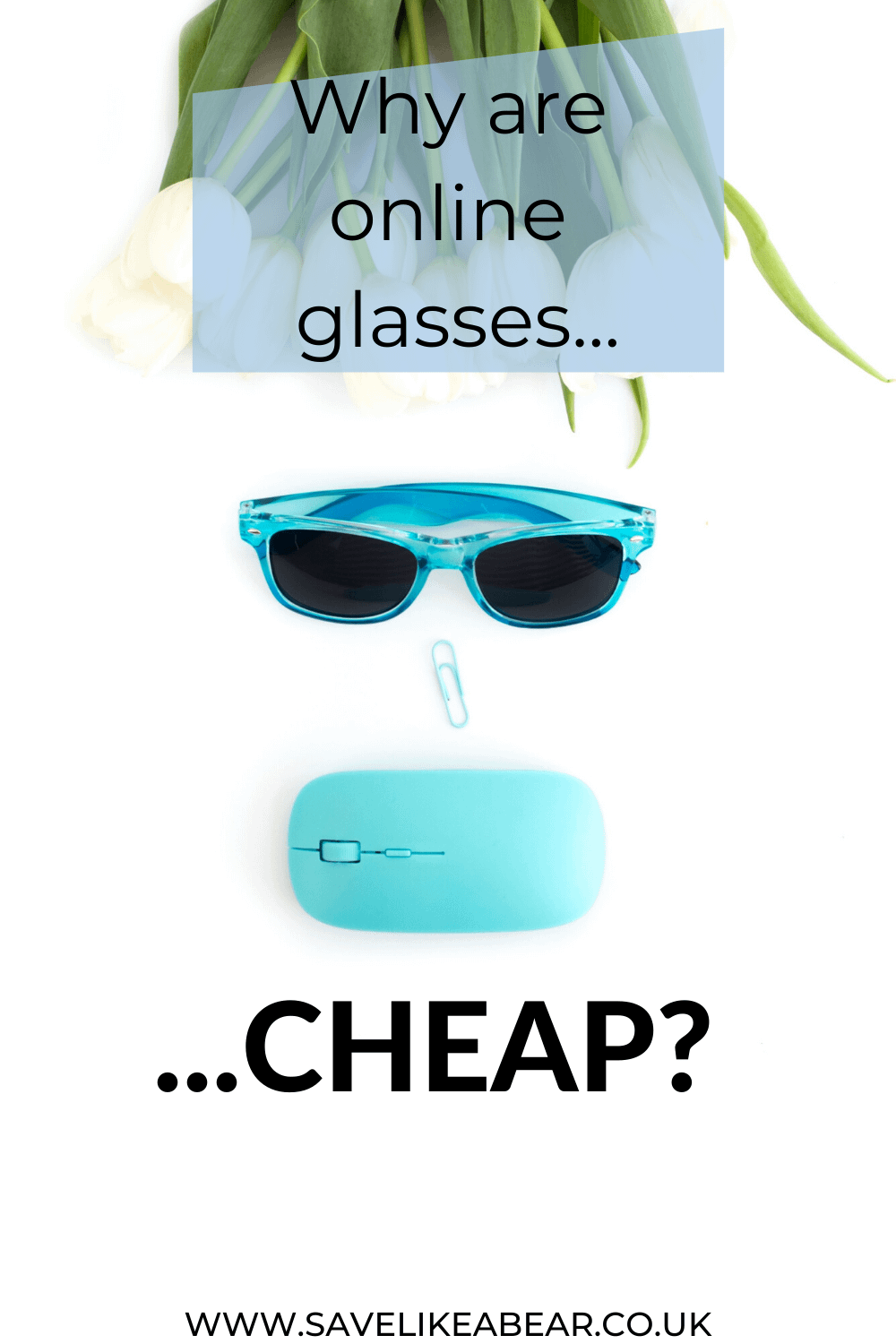A face represented by blue glasses, blue paperclip for a nose, blue computer mouse for a mouth and white flowers for hair. Title Why are online glasses cheap by savelikeabear.co.uk